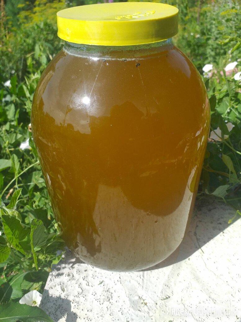 Мёд разнотравье по цене 1600₽ - Продукты, фото 0