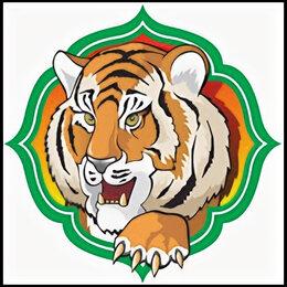Карнавальные и театральные костюмы - Символ года тигра, 0