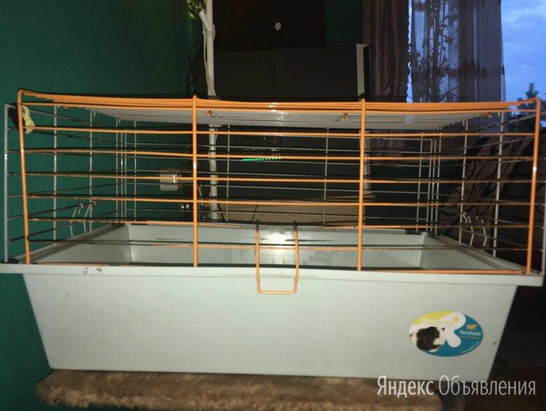 Клетка для крысы или морской свинки по цене 300₽ - Клетки и домики , фото 0