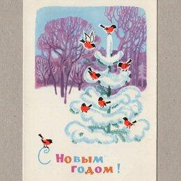 Открытки - Открытка СССР Новый год 1964 Виноградова чистая праздник природа зимний лес, 0