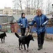 Работа с животными - Рабочая по уходу за животными, 0