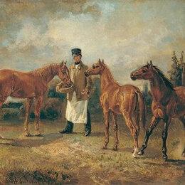 Работа с животными - Требуется конюх , 0