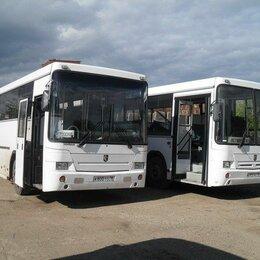 Водители - Водитель категории Д. Опыт работы не менее 3 лет, автобус Нефаз. , 0