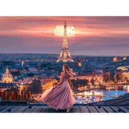 Новогодний декор и аксессуары - На крыше в Париже Артикул : GX 39669, 0