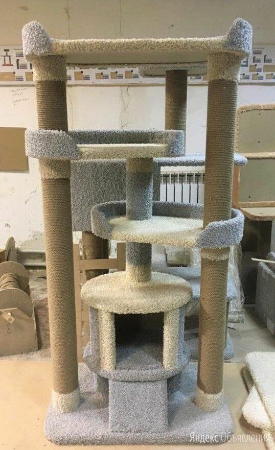 Новый домик, когтеточка для кошки по цене 6000₽ - Когтеточки и комплексы , фото 0