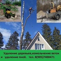 Прочие услуги - Удаление деревьев и расчистка участка., 0
