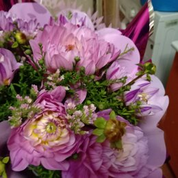 Цветы, букеты, композиции - Букеты  из живых цветов, 0