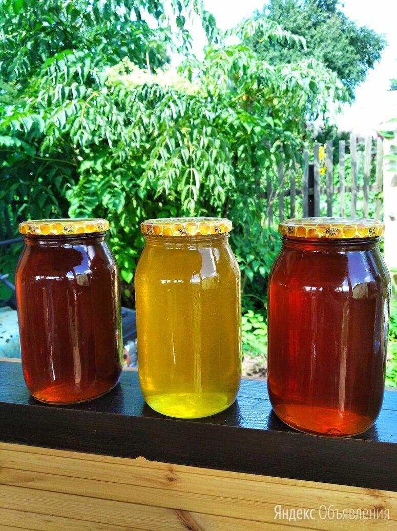 Мёд свежий цветочный 2021 по цене 500₽ - Продукты, фото 0