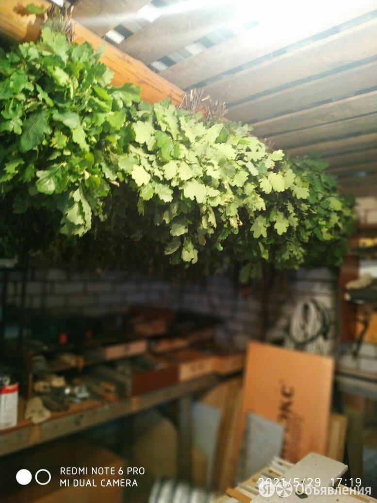 Веники дубовые и берёзовые. по цене 100₽ - Аксессуары, фото 0