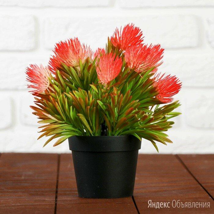 """Бонсай """"Пышный куст цветов"""" 10х20 см микс по цене 796₽ - Цветы, букеты, композиции, фото 0"""