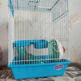 Клетки и домики  - Клетка для грызунов, 29×21×40см, 0