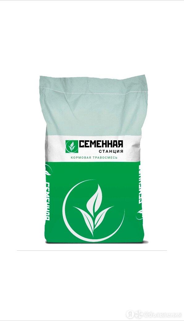 Семена клевера  по цене 195₽ - Семена, фото 0