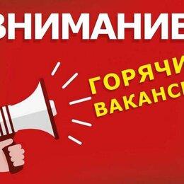 Операторы - Редактор на ПК (на совмещение), 0