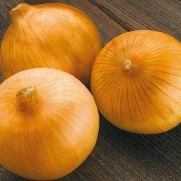 Лук-севок, семенной картофель, чеснок - Лук-севок кругл.в ассортименте 1кг (Россия), 0