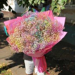 Цветы, букеты, композиции - Радужная гипсофила, 0
