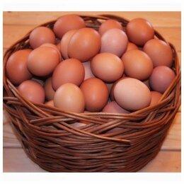 Продукты - Яйца куриные домашние, 0