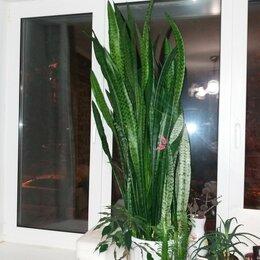 Ремонт и монтаж товаров - Нужно отремонтировать 2 пластиковых окна, 0