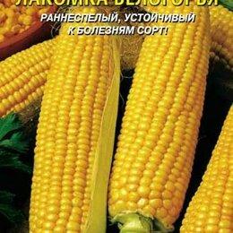 Спецтехника и навесное оборудование - Кукуруза сахарная Лакомка Белогорья ПЛ, 0