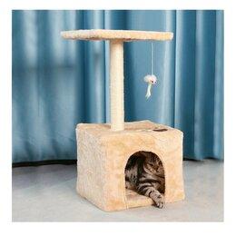 Когтеточки и комплексы  - Домик для кошки когтеточка, 0
