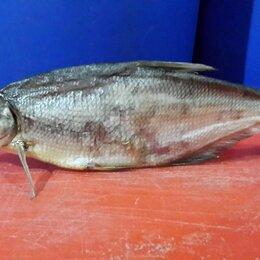 Продукты - Синец(сопа) рыба вяленая, 0