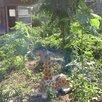 Жирафенок  по цене 7000₽ - Садовые фигуры и цветочницы, фото 4
