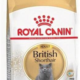 Корма  - Роял Канин Британская короткошерстная  сухой корм для кошек Британской породы..., 0