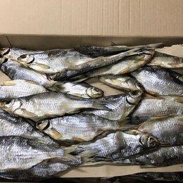Разнорабочие - Рабочий на рыбцех, 0