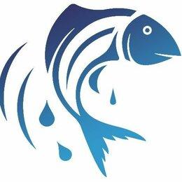 Грузчики - ТК Синее Море, 0