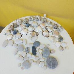 Рукоделие, поделки и сопутствующие товары - Ракушки и камушки морские для творчества, 0