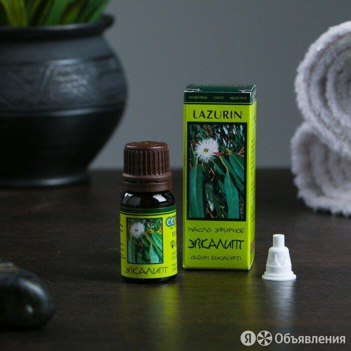 Эфирное масло Эвкалипта в индивидуальной упаковке 10 мл по цене 213₽ - Ароматерапия, фото 0