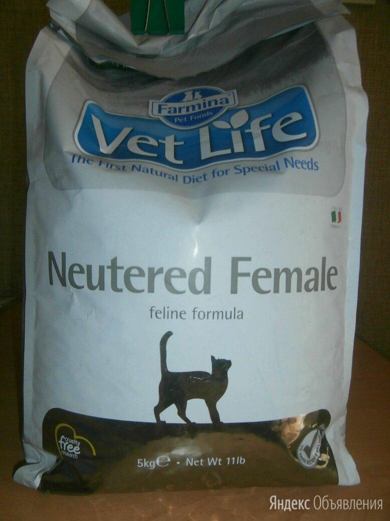 Корм для кастрированных котов 4,7 кг по цене 1800₽ - Корма , фото 0