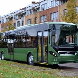 Водители - Водитель автобуса, 0
