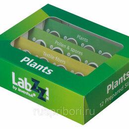 Микроскопы - Набор микропрепаратов Levenhuk N12 Lab ZZ (Растения), 0