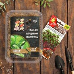 Семена - Мой выбор Набор для выращивания на балконе микрозелени Свекла, 0