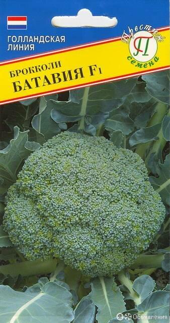 Капуста брокколи Батавия F1 (Престиж) по цене 38₽ - Семена, фото 0