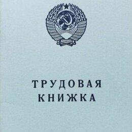 Документы - Трудовая книжка 1974 года, 0