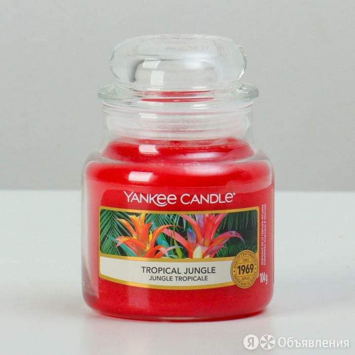 Свеча ароматическая в банке Тропические джунгли Tropical Jungle, 104 гр, 25-45 ч по цене 1345₽ - Декоративные свечи, фото 0