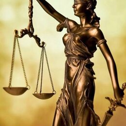 Финансы, бухгалтерия и юриспруденция - Юридические услуги., 0
