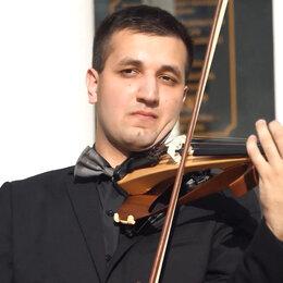 Организация мероприятий - Скрипка на праздник, 0