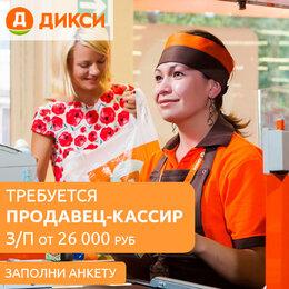 Продавцы и кассиры - Продавец-кассир Дикси, 0