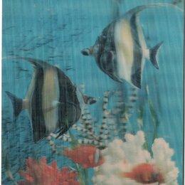 Конверты и почтовые карточки - Почтовая карточка Подводная съемка Япония 1970, 0