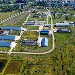 Сельское хозяйство - Продается новая молочно-товарная ферма на1200 голов КРС, 0