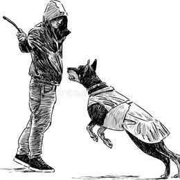 Услуги для животных - Услуги кинолога фигуранта, 0
