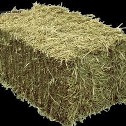 Товары для сельскохозяйственных животных - Сено, 0