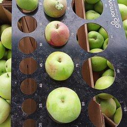 Продукты - Яблоки оптом. Производитель, 0
