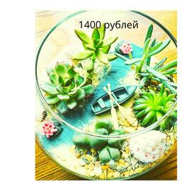 Цветы, букеты, композиции - Фитофлорариум суккуленты мини сады, 0