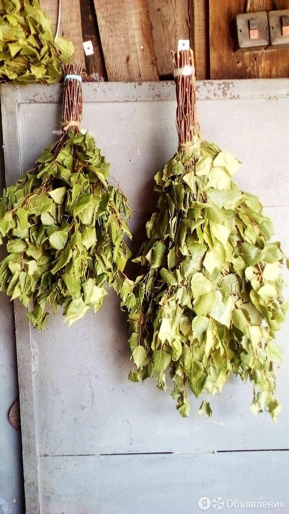 березовые веники для бани по цене не указана - Аксессуары, фото 0