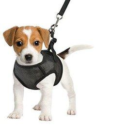 Шлейки  - Шлейка-жилетка для собак, 0