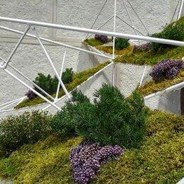 Искусственные растения - Ландшафтная архитектура, фитостена, мох ягель, растения , 0