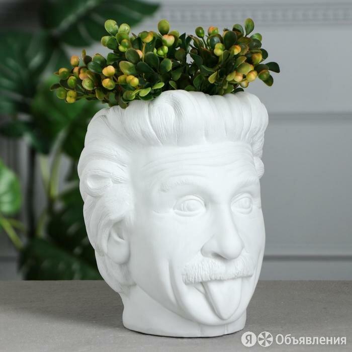 Органайзер-кашпо 'Эйнштейн', белый, 21 см по цене 1235₽ - Органайзеры и кофры, фото 0
